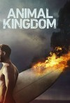 Animal Kingdom - Season 2 (DVD)