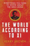 World According to Xi - Kerry Brown (Paperback)