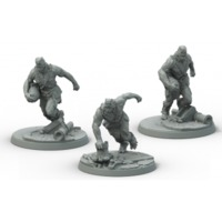 Fallout: Wasteland Warfare - Super Mutants Suiciders (Miniatures) - Cover
