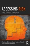 Assessing Risk - Stephen Blumenthal (Paperback)