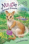 Magic Animal Friends: Polly Bobblehop Makes a Mess - Daisy Meadows (Paperback)