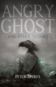 Angry Ghost and Other Stories - Peter Spokes (Paperback) - Cover