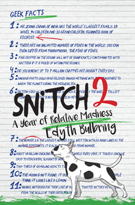 Snitch 2 - Edyth Bulbring (Paperback) - Cover