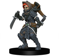 Wardlings - Painted Minis: Girl Rogue & Badger (Miniatures) - Cover