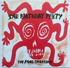 Birthday Party - The Peel Sessions (Vinyl)