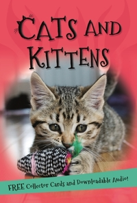 It's All About... Cats and Kittens (Paperback) - Cover