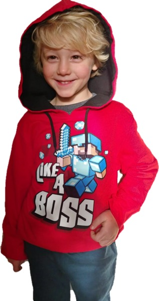 d50c43230526 Minecraft - Like a Boss - Youth Hoodie - Red (Large) - Merch Online ...