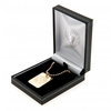 Chelsea - Gold Plated Dog Tag and Chain