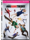 Big Bang Theory - Season 11 (DVD)