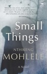 Small Things - Nthikeng Mohlele (Paperback)