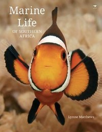 Animals of Southern Africa - Marine Life - Lynne Matthews (Hardcover) - Cover