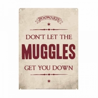 Harry Potter - Muggles Small Tin Sign (Metal Wall Sign A5) - Cover