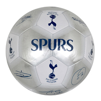 Tottenham Hotspur - Club Crest & Players Signatures Silver Football (Size 5) - Cover