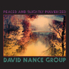 David Nance Group - Peaced and Slightly Pulverized (Vinyl)