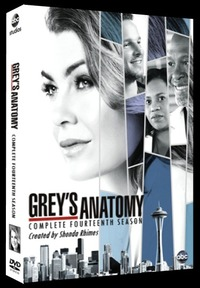 Grey's Anatomy - Season 14 (DVD)