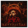 Slayer Repentless Patch
