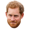 Prince Harry - Face Mask