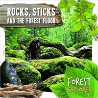 Rocks, Sticks & The Forest Floor - Robin Twiddy (Hardcover) - Cover