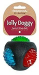 Rosewood - Jolly Doggy Catch & Flash Ball