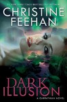 Dark Illusion (Hardcover)