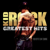 Kid Rock - Greatest Hits: You Never Saw Coming (Vinyl)