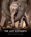 The Last Elephants - Don Pinnock (Hardcover)