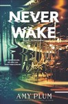 Neverwake - Amy Plum (Paperback)