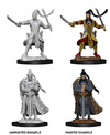Dungeons & Dragons - Nolzur's Marvelous Unpainted Miniatures - Male Elf Paladin (Miniatures)