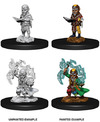 Pathfinder - Deep Cuts - Male Gnome Sorcerer (Miniatures)
