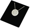 Chelsea - Stainless Steel Crest Pendant/Chain