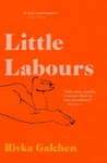Little Labours - Rivka Galchen (Paperback)