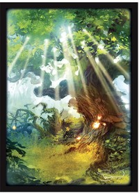 Legion Supplies - Card Sleeves - Lands Forest (50 Sleeves) - Cover