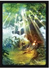 Legion Supplies - Card Sleeves - Lands Forest (50 Sleeves)