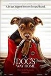Dog's Way Home (Bd/DVD Combo) (Region A Blu-ray)