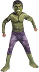 Hulk Action Costume