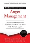 The Practitioner's Guide to Anger Management - Howard Kassinove (Paperback)