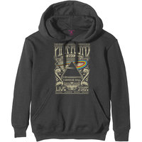 Pink Floyd Carnegie Hall Poster Men's Charcoal Hoodie (XXX-Large) - Cover