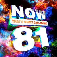 Various - Now That's What I Call Music Vol. 81 (CD)