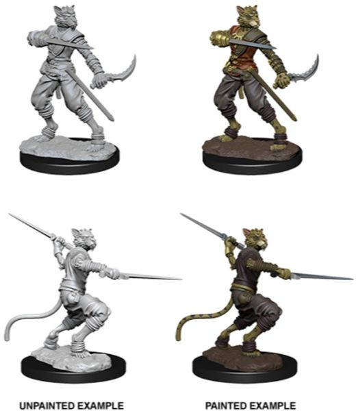Dungeons & Dragons - Nolzur's Marvelous Unpainted Miniatures