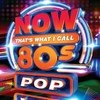 Various Artists - Now That's What I Call 80s Pop (CD)