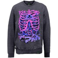 Rick And Morty - X Absolute Cult - Anatomy Park Mens Sweater (X-Large)