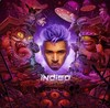 Chris Brown - Indigo (CD)