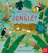 Who's Hiding In the Jungle? (Board book)