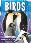 Birds - Emilie Dufresne (Hardcover)