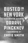 Busted In New York And Other Essays - Darryl Pinckney (Hardcover)