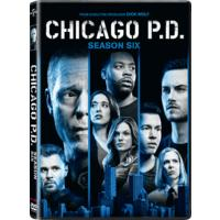 Chicago P.D. - Season 6 (DVD)