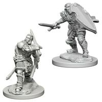 Dungeons & Dragons - Nolzur's Marvelous Unpainted Miniatures - Human Male Paladin (Miniatures) - Cover