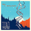 Toad the Wet Sprocket - New Constellation (CD)