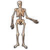Amscan - Halloween Skeleton Jointed Cut-Outs Decorations - 1.4m