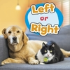 Left or Right - Wiley Blevins (Hardcover)